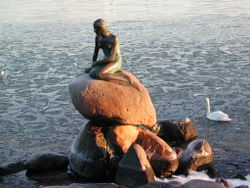 Statue of the Little Mermaid in Copenhagen harbour